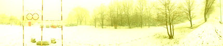 VII bieg o puchar burmistrza Pszowa, panorama