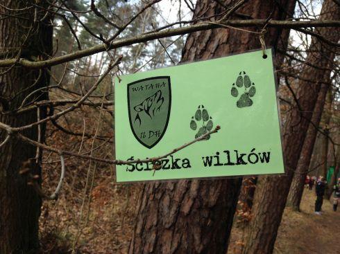 Tropem Wilczym Bieg Pamieci Zolnierzy Wykletych, Żory, 2015, Ścieżka Wilków