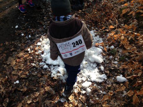 Tropem Wilczym Bieg Pamieci Zolnierzy Wykletych, Żory, 2015, jedyny śnieg