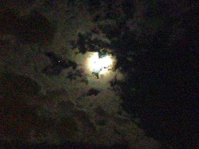 Noc, zapach biegania