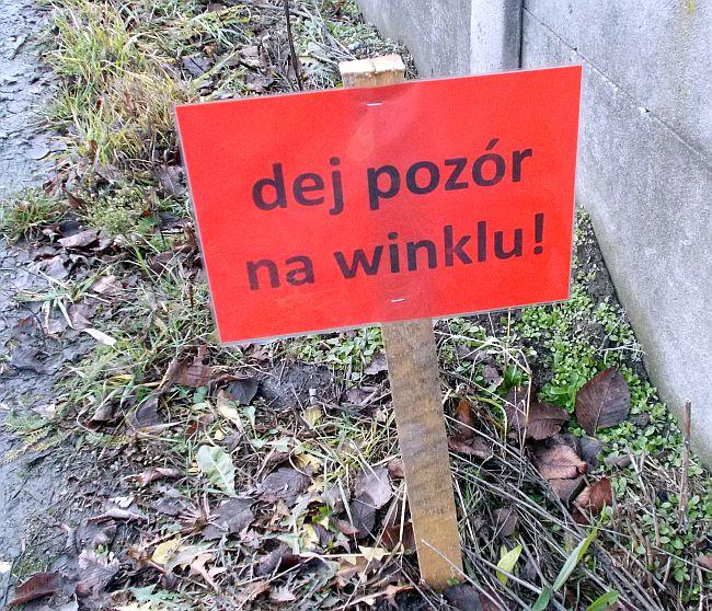 Winkiel1