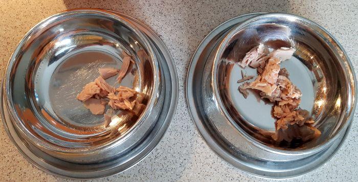 Miseczki z tunczykiem dla kotów