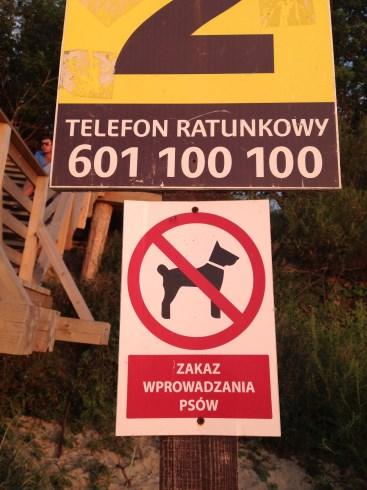 zakaz wyprowadzania psow na plaze