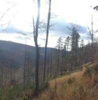 Górska Przygoda 2015 – panorama 2