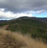 Górska Przygoda 2015 – i do góry