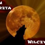 """""""Wilczy Legion"""" – Adam Przechrzta"""