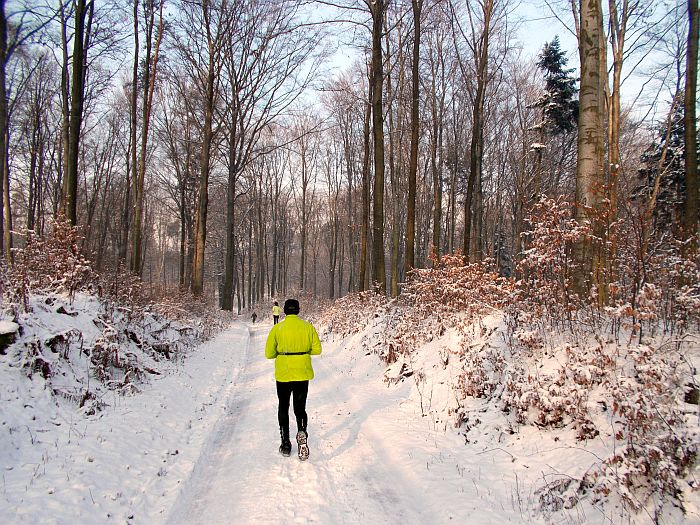 bieg o puchar burmistrza pszowa las