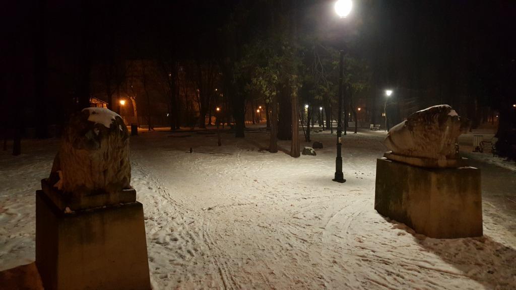 nocne bieganie - park Żory