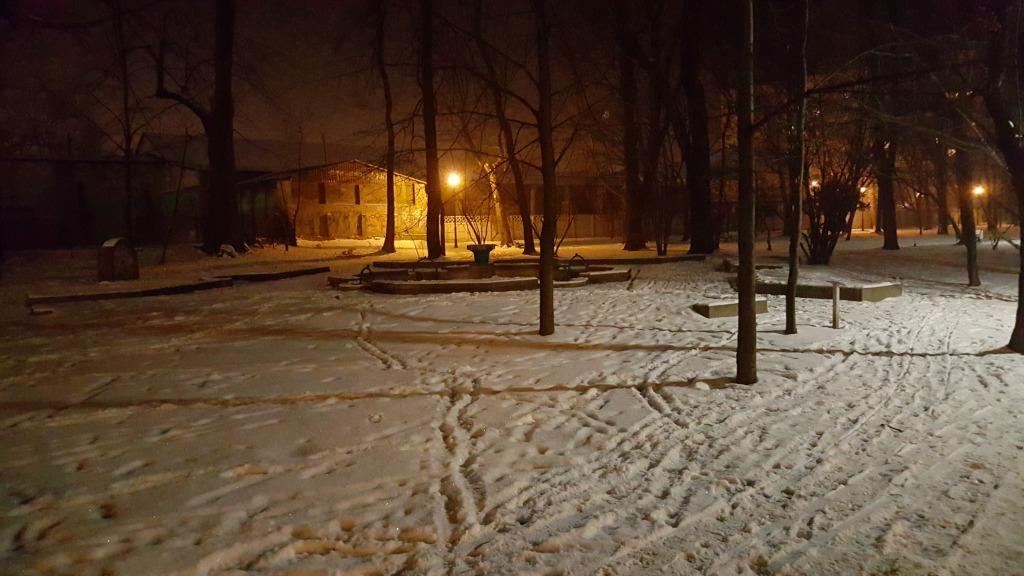 żorski park - bieganie nocą