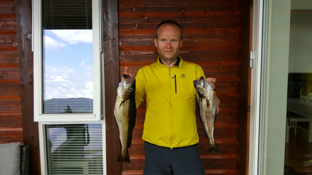 15_ryby