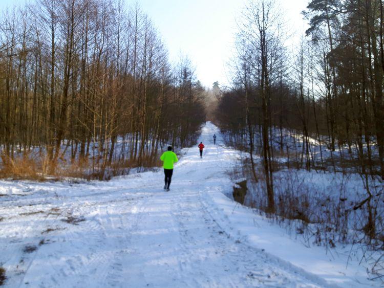 Podbieg 8km bieg o puchar burmistrza miasta pszów
