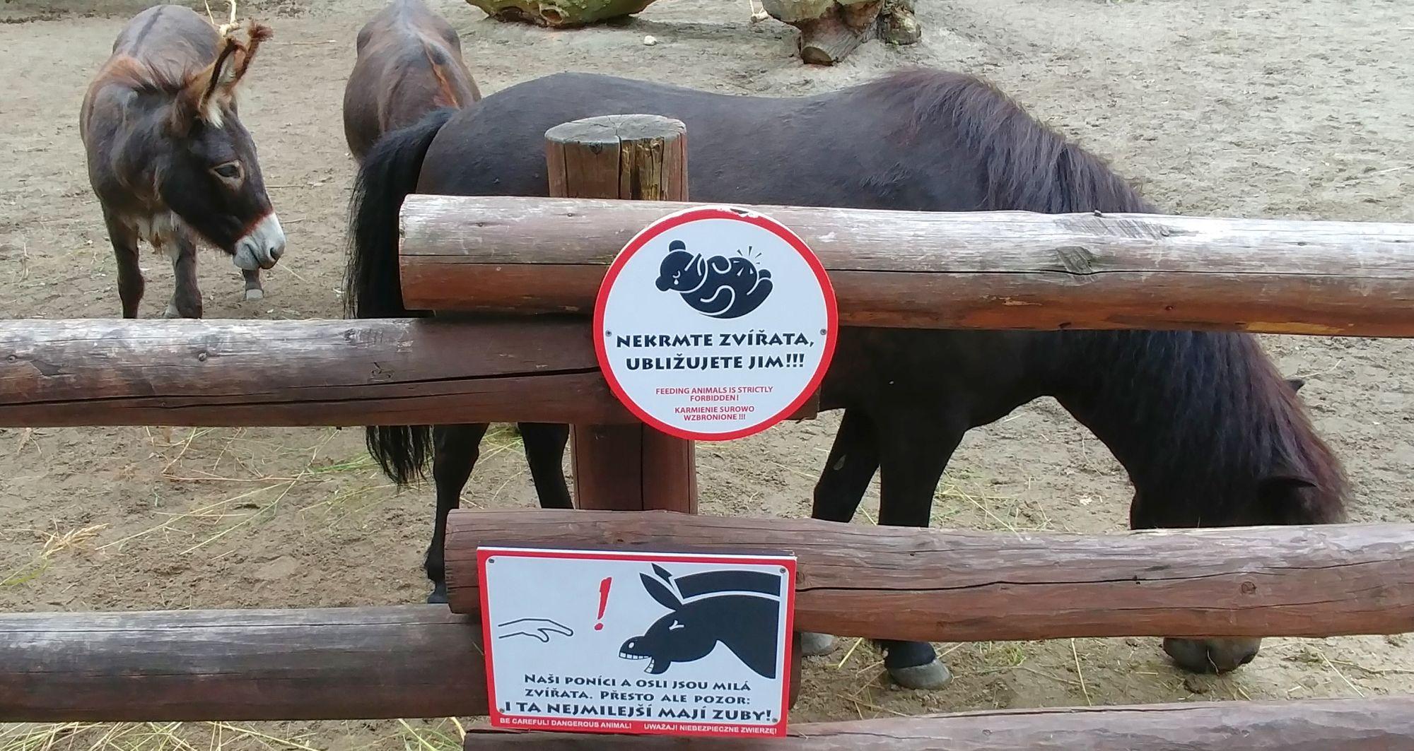 nie karmić zwierząt ZOO Ostrava
