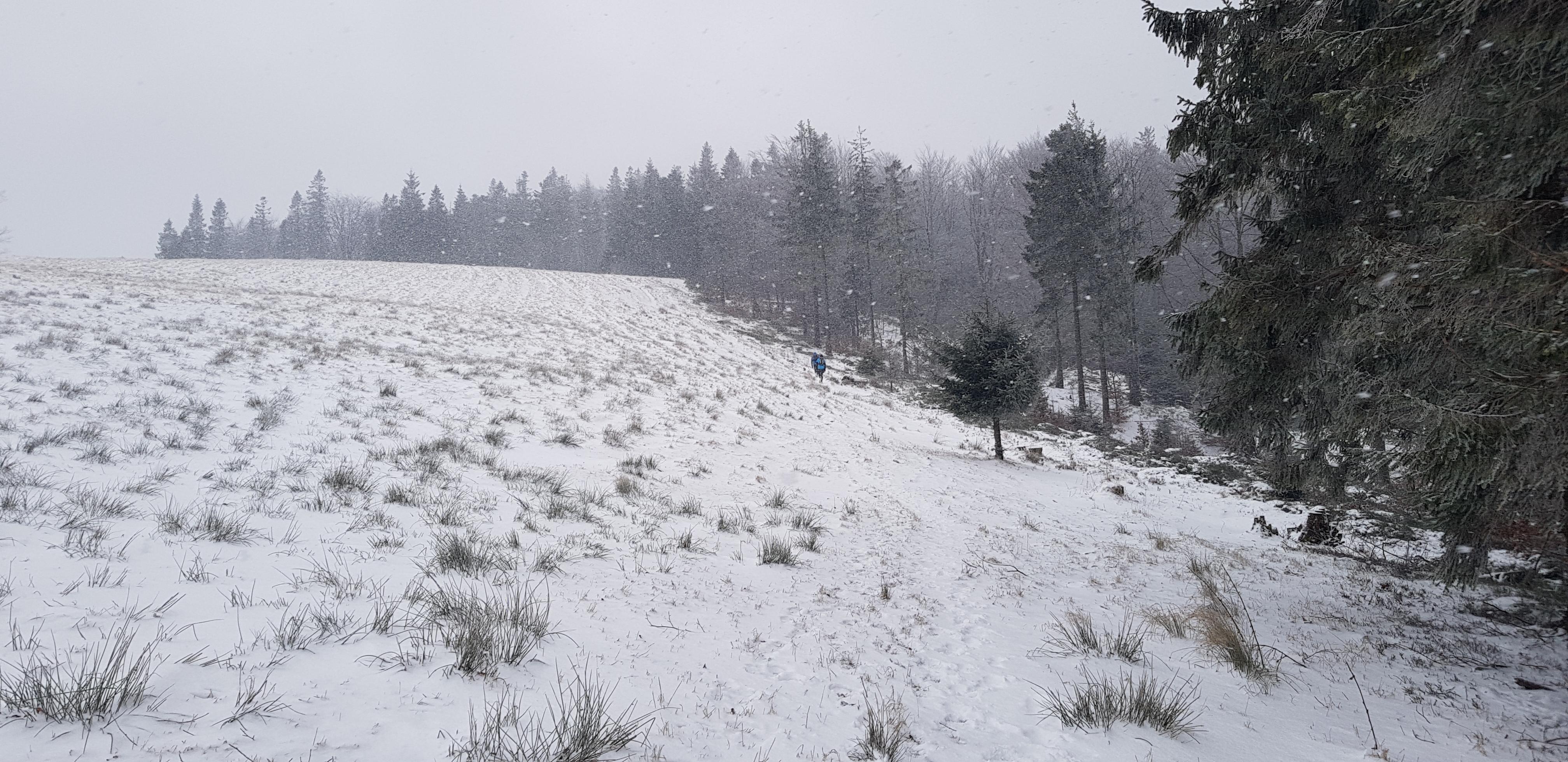 zimowy stok górskie zimowe bieganie