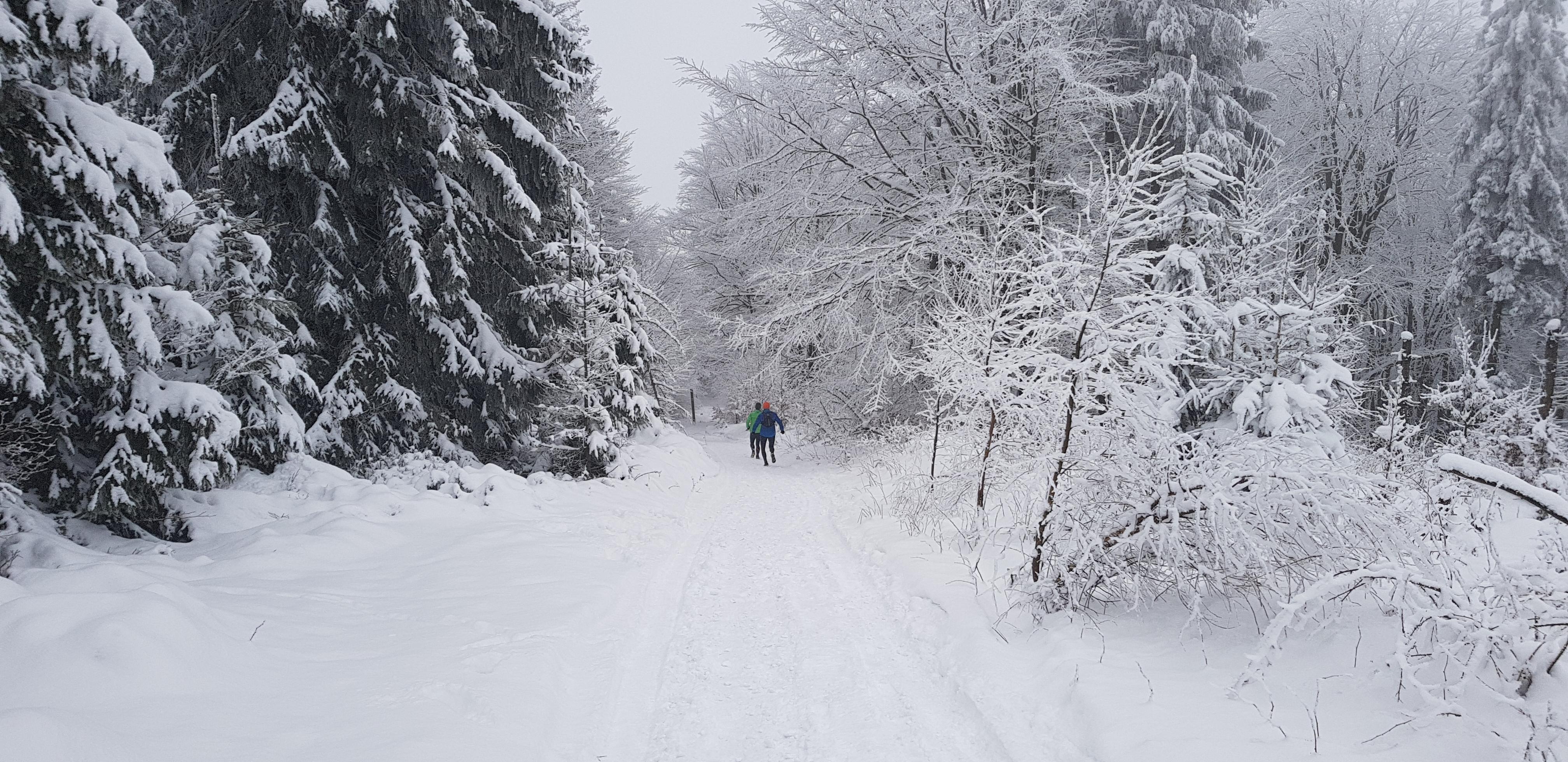 bieg treningowy w zimie na Czantorię