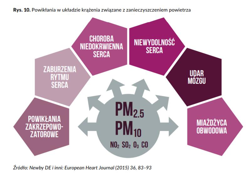 na co wpływają zanieczyszczenia PM